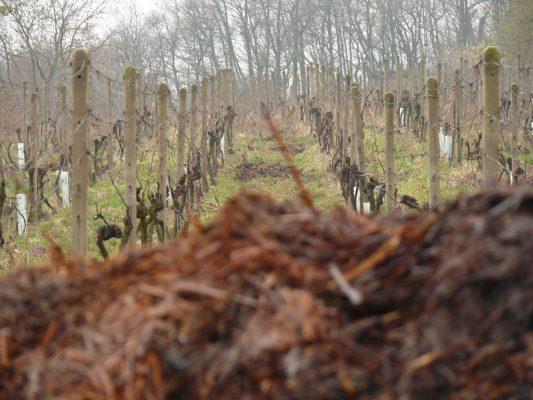 Michal hnojí miestnym hnojom.