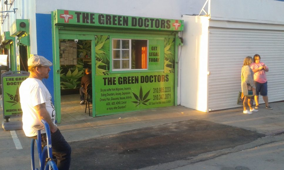 Zelení doktori v Los Angeles. FOTO - Juraj Hipš