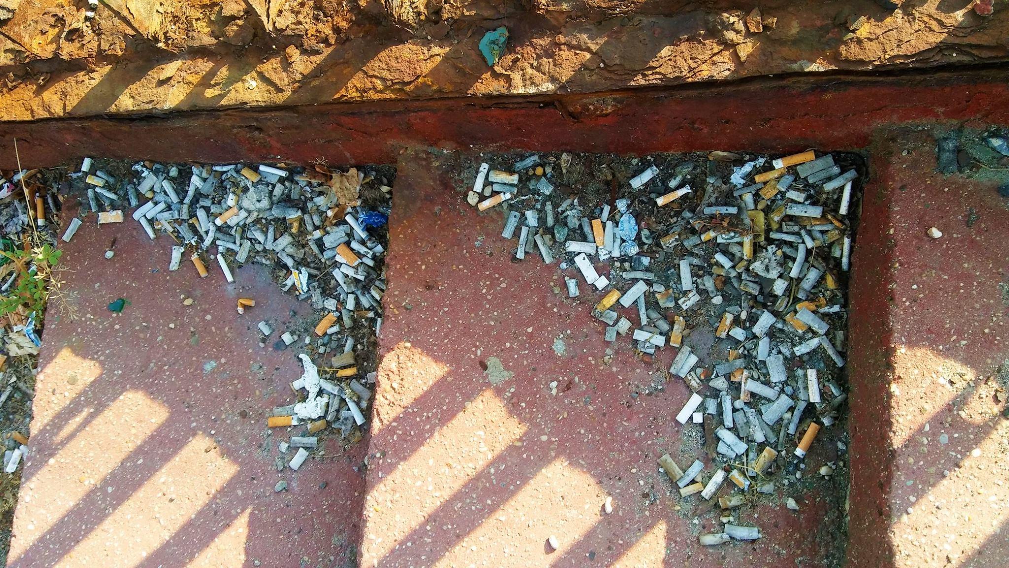 cigaretove-ohorky