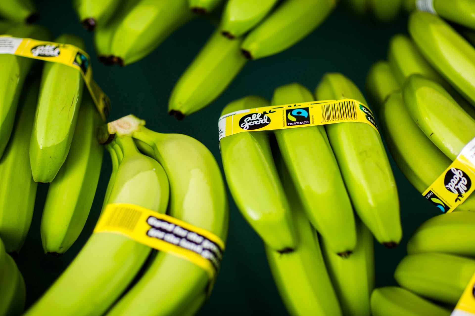 Len pár centov naviac môže zmeniť pestovateľovi banánov život. Prečítajte si, ako funguje systém Fair Trade