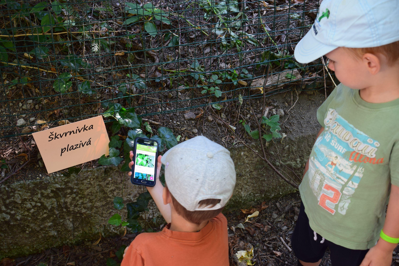Aplikácia na rozpoznávanie rastlín vytiahla deti do prírody. Pomohla im objaviť vzácne aj invazívne druhy