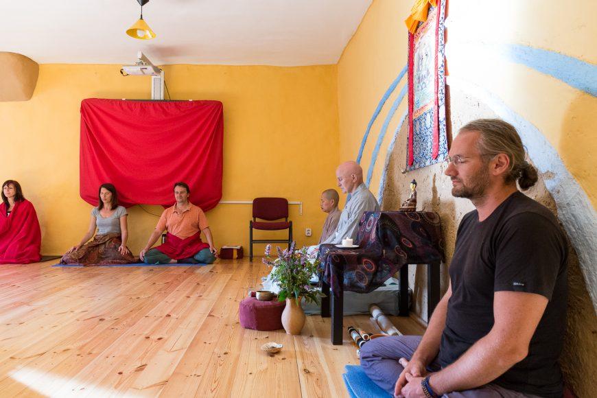 meditacia-zajezova