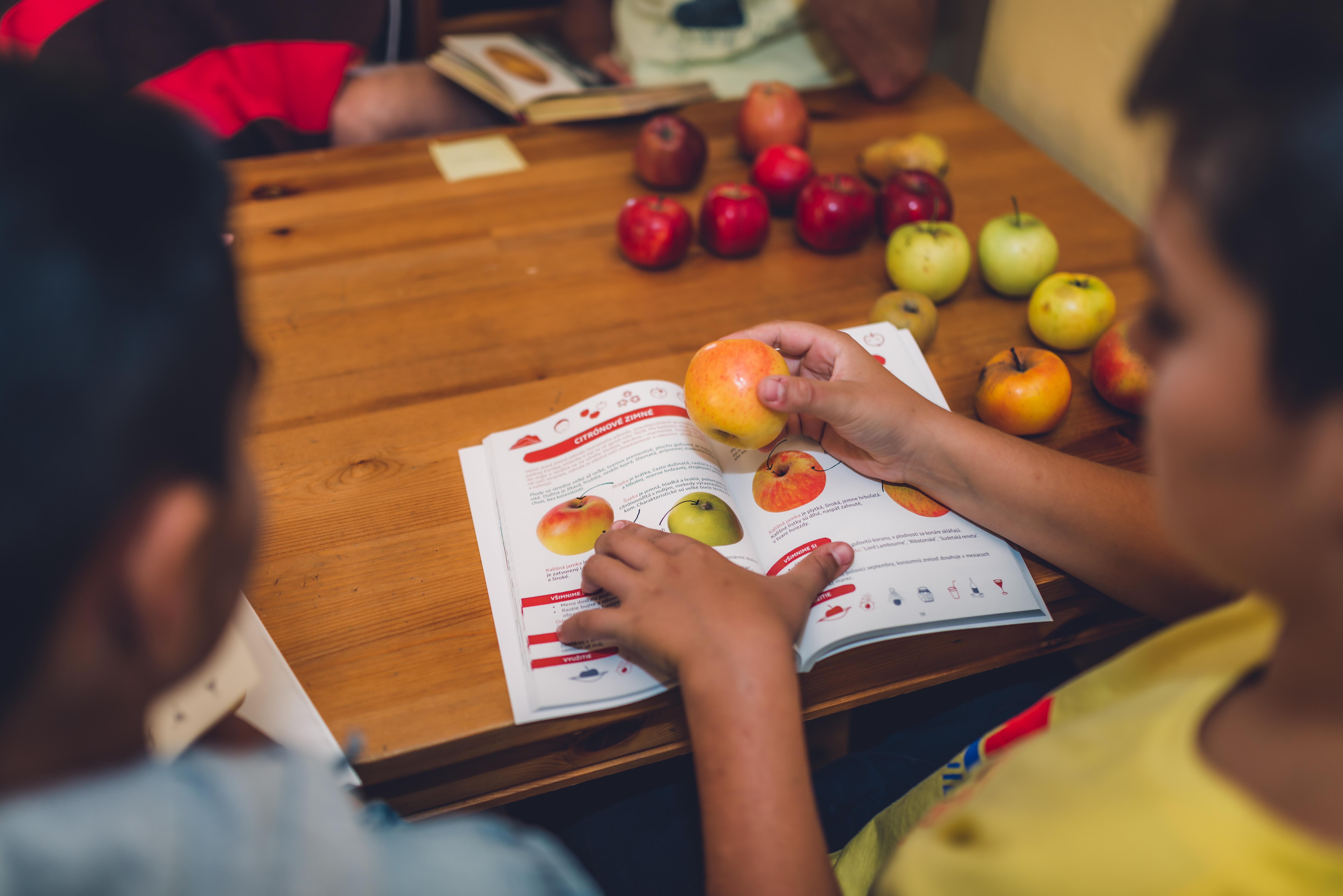 So žiakmi sadí stromy: Zisťujú, že jablká nie sú len jedlo, ale aj súčasť našej kultúry