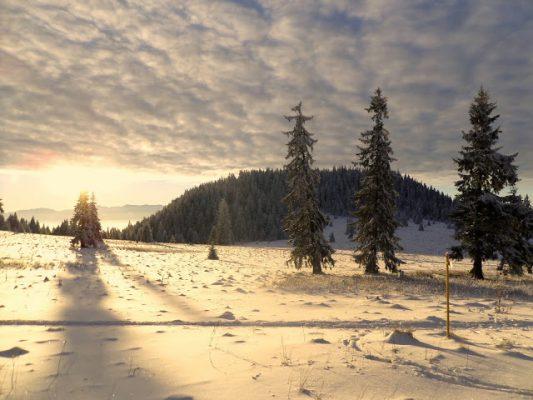 Zima vie byť aj krásna. FOTO - red
