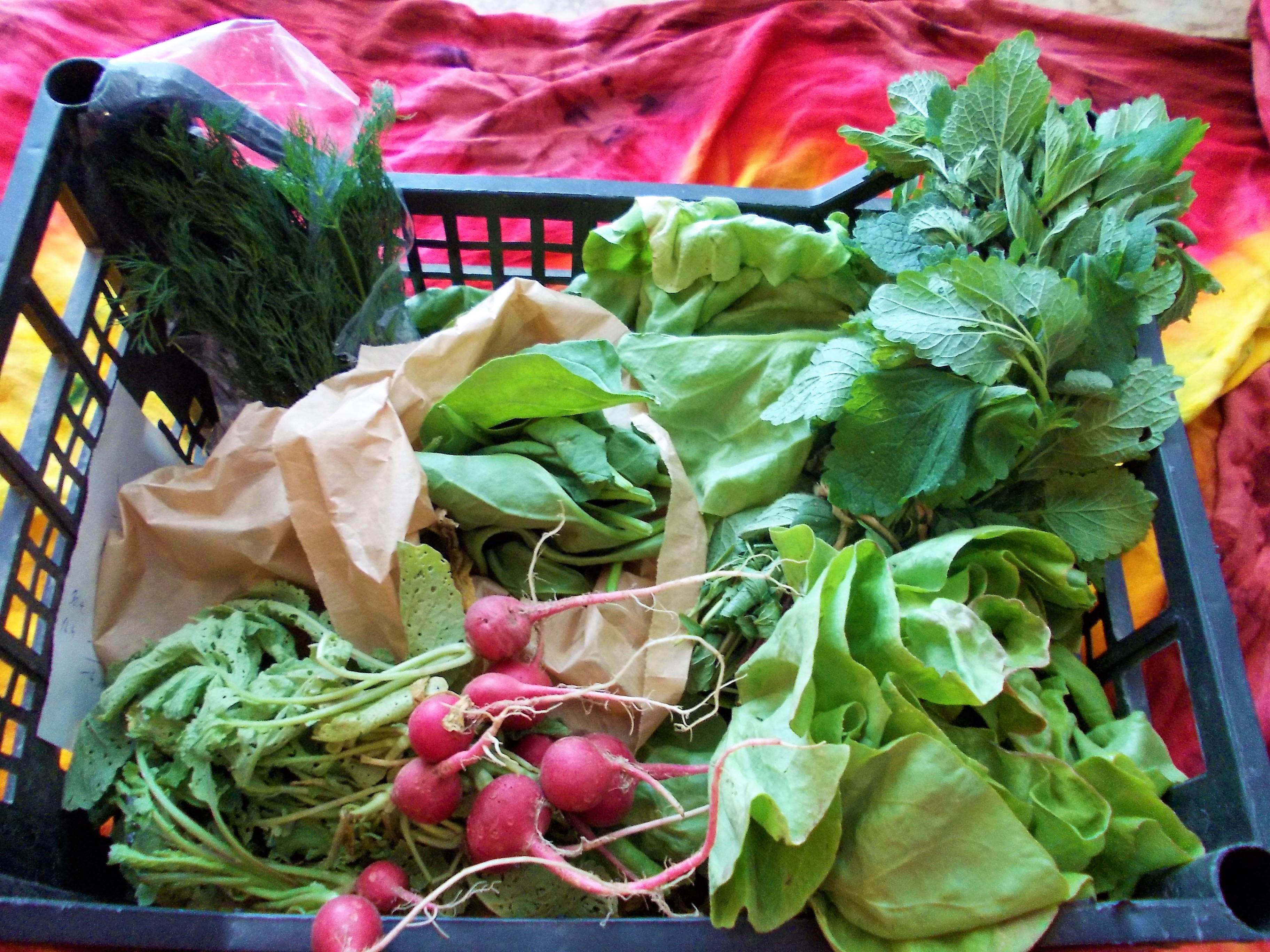 5 dôvodov, prečo poznať farmárov