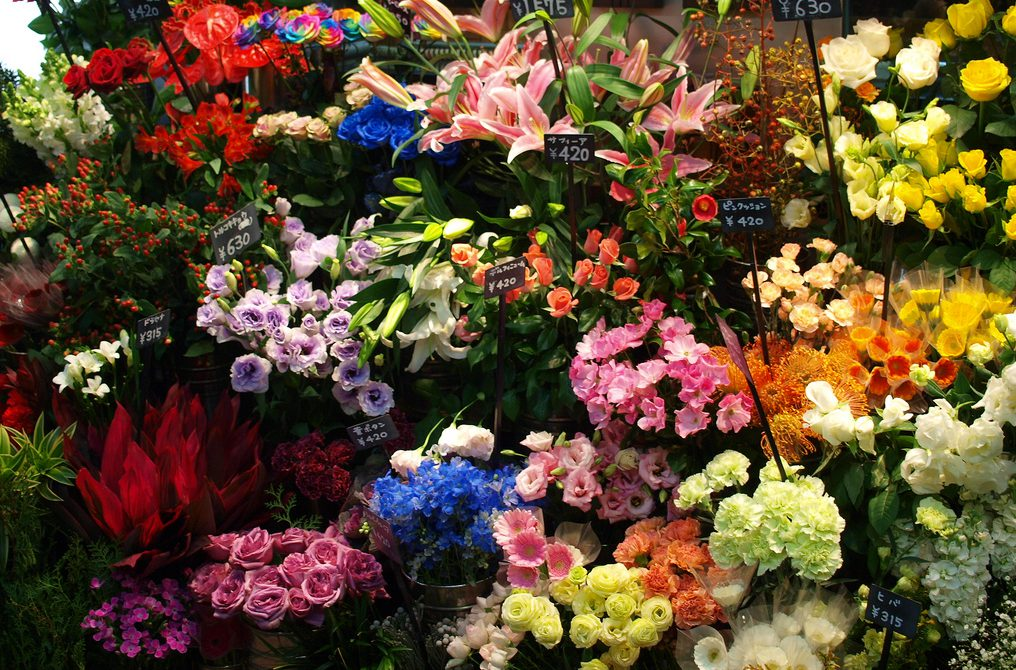 Nepekné tajomstvá kvetinových kytíc