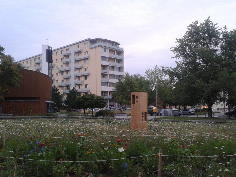 mestske-vcely