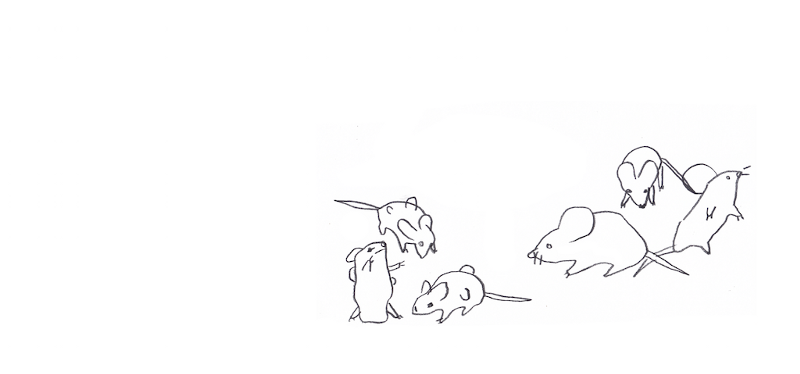 A potom vyvolali myške infarkt…