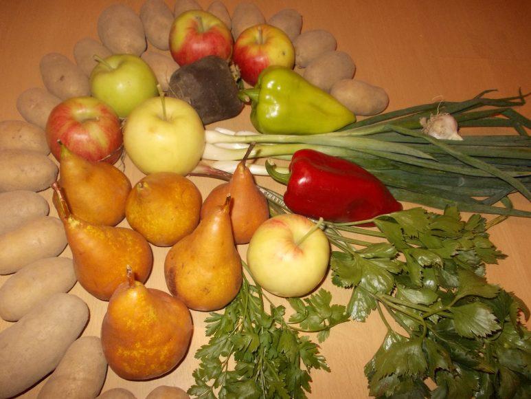 zelenina-farmari