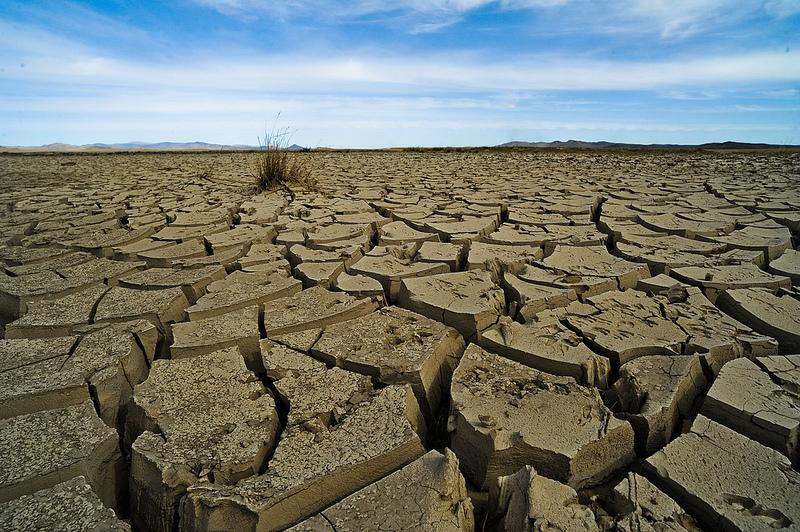 Ekopsychológ: Len malá časť populácie reaguje na etické argumenty